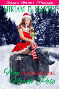 Hop on Over to the North Pole_Cover_v1